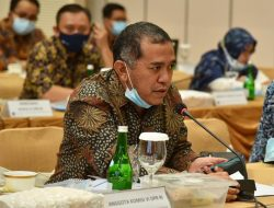 DPR Desak Kemendag dan BKPM, Impor Bibit Ayam Harus Senafas dengan UU Cipta Kerja